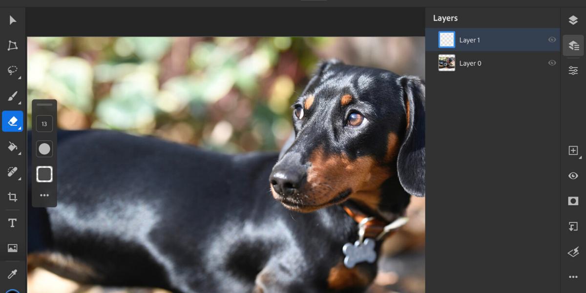 Adobe Photoshop pre iPad